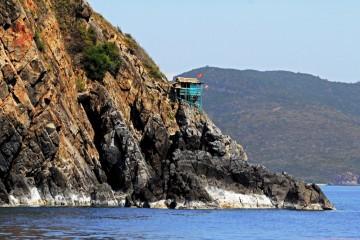 Đảo Yến – Điểm đến kỳ diệu của loài chim biển