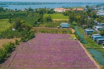 Tổng hợp các điểm du lịch nổi tiếng An Giang