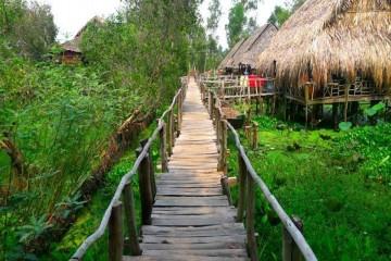 Lạc lối giữa vườn chim ở khu du lịch sinh thái Gáo Giồng Đồng Tháp