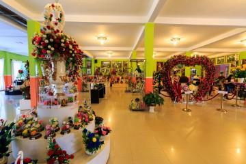 Showroom hoa khô Đà Lạt  - mãn nhãn với vẻ đẹp của muôn hoa vĩnh cửu theo thời gian.
